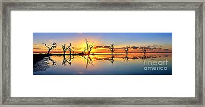 Silhouetted Sential Sunset Framed Print by Bill  Robinson