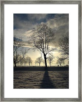 Silhouettes And A Long Winter Shadow  Framed Print