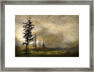 Silhouettes In The Storm Framed Print by Theresa Tahara