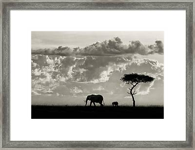 Silhouettes Of Mara Framed Print