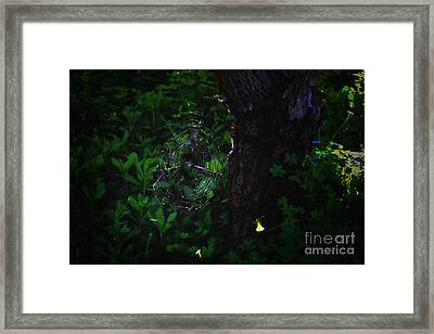 Silk Framed Print by Cassandra Buckley