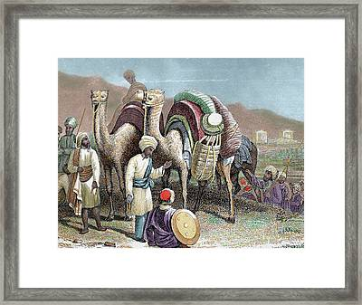Silk Road Caravan Of Camels Resting Framed Print by Prisma Archivo