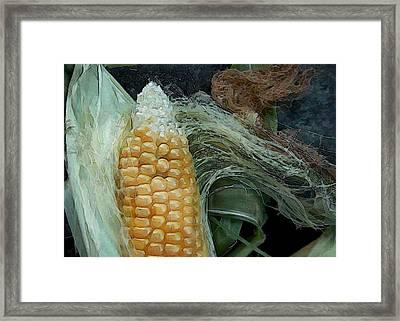 Silken Ear Framed Print