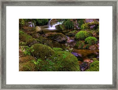 Silky Cascades Framed Print