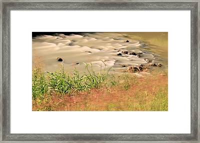 Water Rock And Dancing Grass Framed Print by Katrina Lau