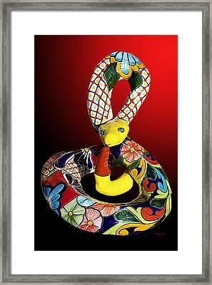 Silly Snake Framed Print by Phyllis Denton