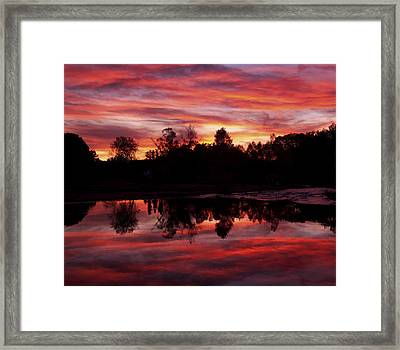 Silohuettes Framed Print by Tom Kelly
