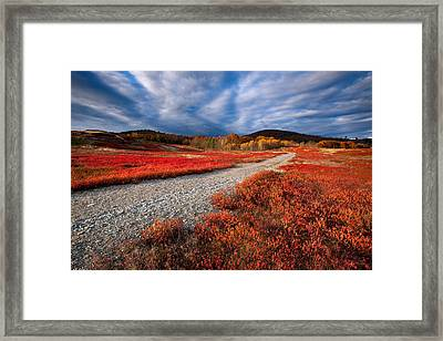 Silsby Plains Framed Print by Patrick Downey