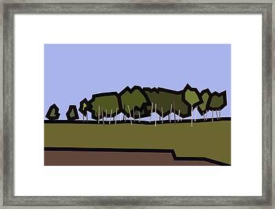 Silver Birch Framed Print by Kenneth North