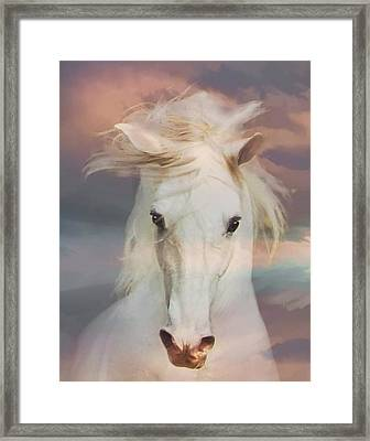 Silver Boy Framed Print