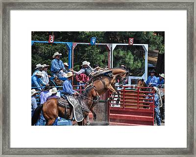 Framed Print featuring the photograph Silver Buckle Chute #4 by Jan Davies