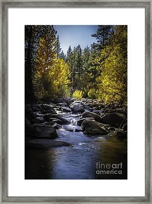 Silver Creek Framed Print by Mitch Shindelbower
