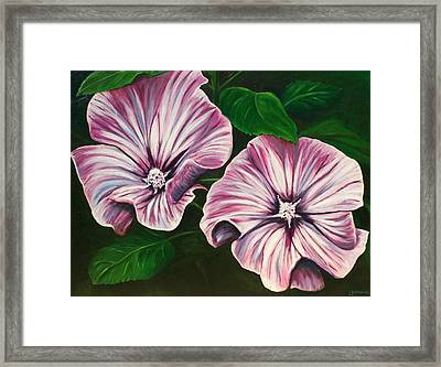 Silver Cup - Lavatera Framed Print