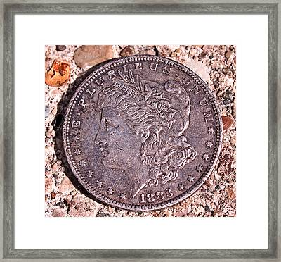 Silver Dollar  Framed Print by Jon Baldwin  Art