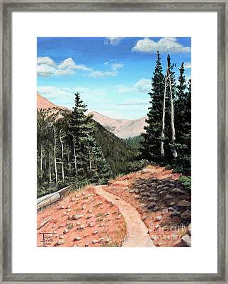 Silver Dollar Trail Colorado Framed Print