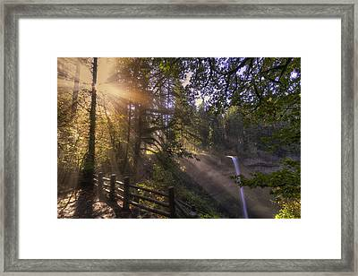 Silver Falls Light Framed Print