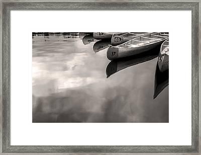 Silver Fish II Framed Print by Jon Glaser