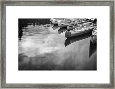 Silver Fish IIi Framed Print by Jon Glaser