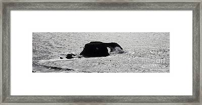 Silver Glistening Ocean Sonoma County California Framed Print by Wernher Krutein