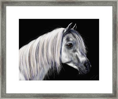 Grey Arabian Mare Painting Framed Print by Michelle Wrighton