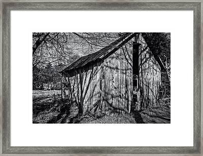 Silver Grey Framed Print