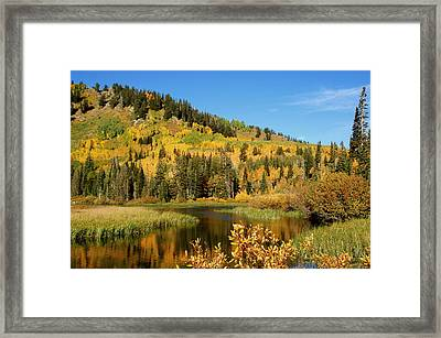 Silver Lake Framed Print