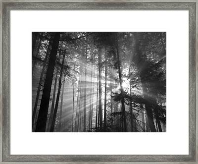 Silver Light Framed Print