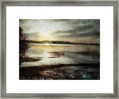 Silver Morning Framed Print