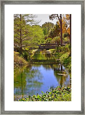 Silver Springs Florida Framed Print by Christine Till