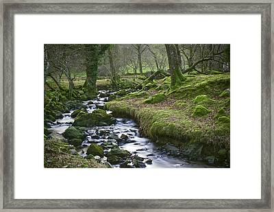 Framed Print featuring the photograph Silver Stream by Trevor Chriss
