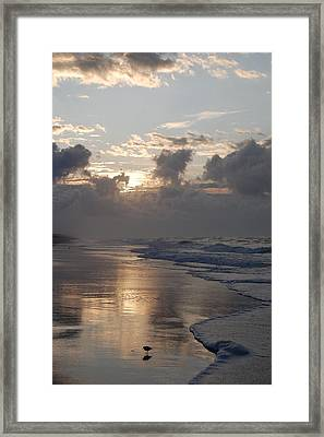 Silver Sunrise Framed Print by Mim White