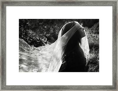 Silver Veil Framed Print by Cambion Art