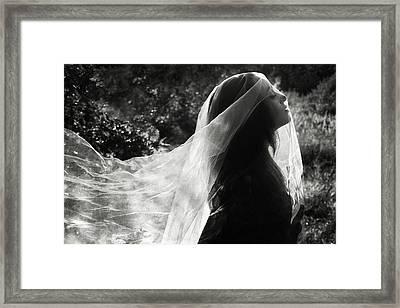 Silver Veil Framed Print