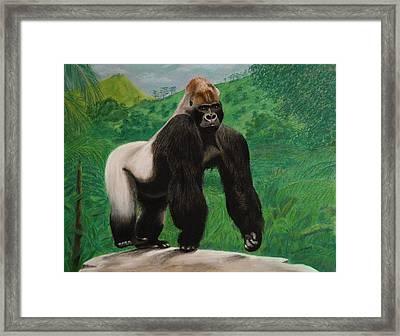 Silverback Gorilla Framed Print by David Hawkes