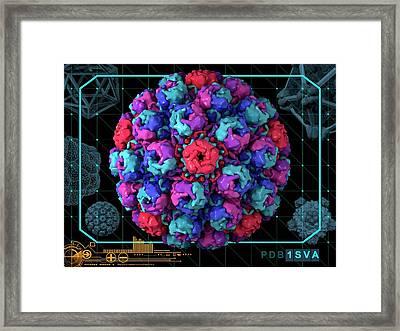 Simian Virus 40 Framed Print by Laguna Design/science Photo Library