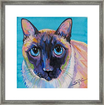 Simon The Siamese Framed Print