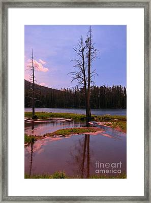 Simple Beauty Of Yellowstone Framed Print by John Malone
