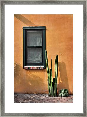 Framed Print featuring the photograph Simple Design by Barbara Manis