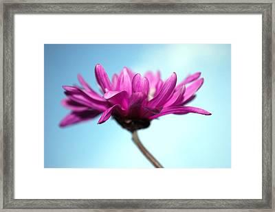 Simple Framed Print by Kjirsten Collier