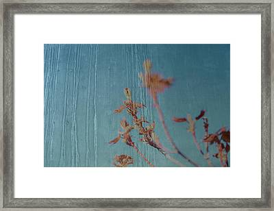 Simple Life Again Framed Print by Mark  Ross