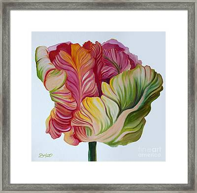 Simple Tulip Framed Print