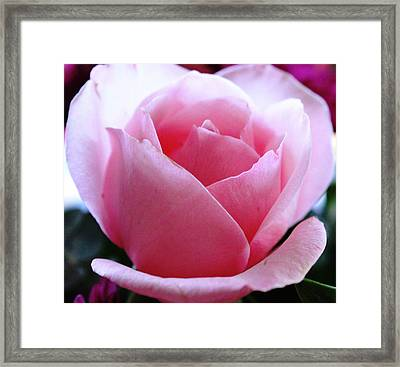 Framed Print featuring the photograph Simplicity And Grace by Judy Palkimas