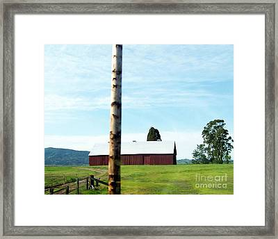 Framed Print featuring the photograph Simplicity by Bobbee Rickard