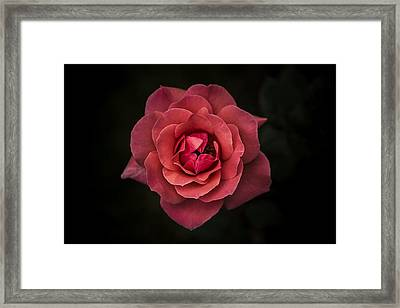 Simplicity Is Beauty Framed Print by Rui Boino