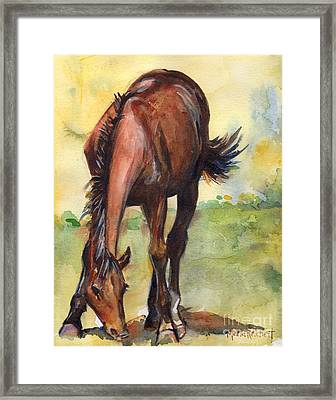 Horse Grazing Simplicity  Framed Print by Maria's Watercolor