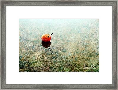 Simplicity Framed Print by Randi Grace Nilsberg