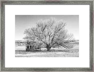 Simply Black And White Framed Print