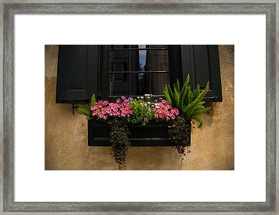 Simply Charleston Framed Print