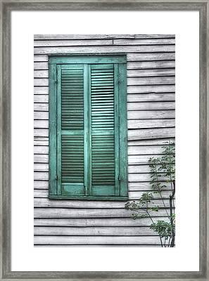 Simply Green Framed Print by Brenda Bryant