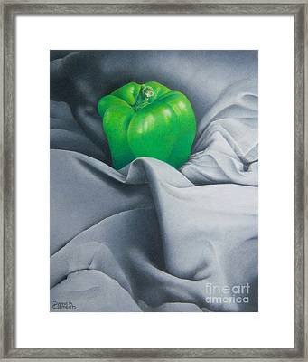 Simply Green Framed Print by Pamela Clements